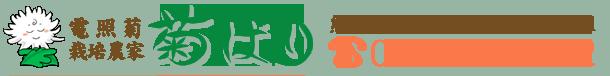 電照菊栽培農家【藤島菊ばり農園】電話【0964-56-1642】