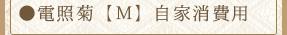 電照菊【M】自家消費用